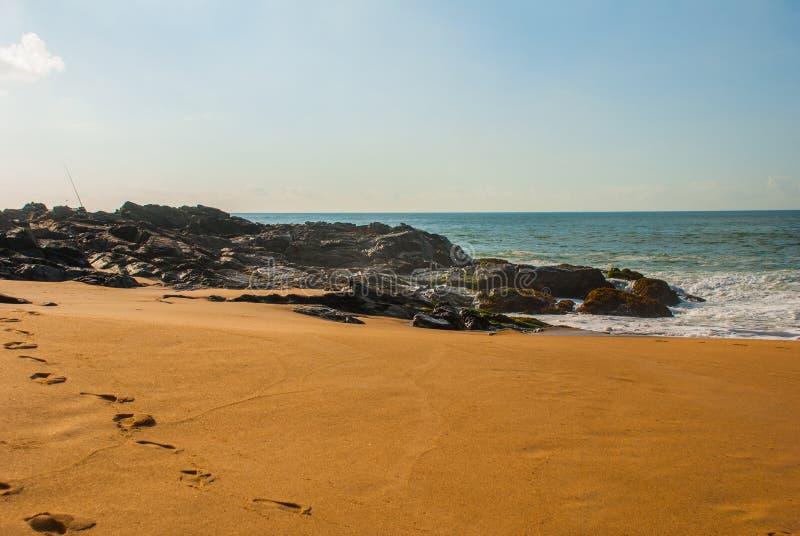 Spiaggia brasiliana con il mare giallo sabbia e blu in tempo soleggiato brazil salvador Il Sudamerica fotografia stock libera da diritti