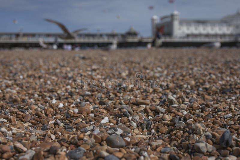 Spiaggia a Brighton, Inghilterra, il BRITANNICO - ciottoli ed il pilastro fotografie stock