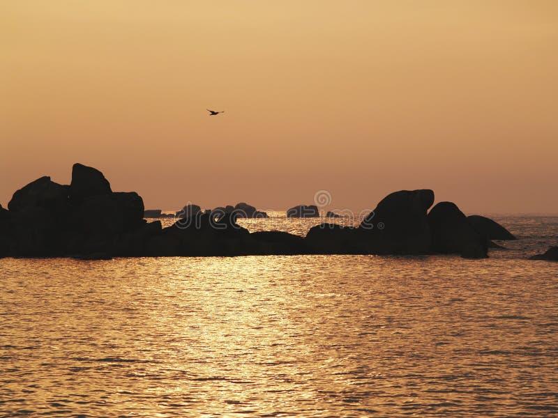 Spiaggia in brittany fotografia stock libera da diritti