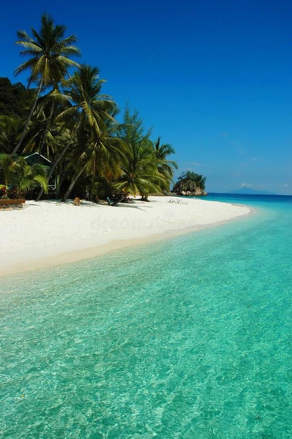 Spiaggia calda di estate immagine stock libera da diritti