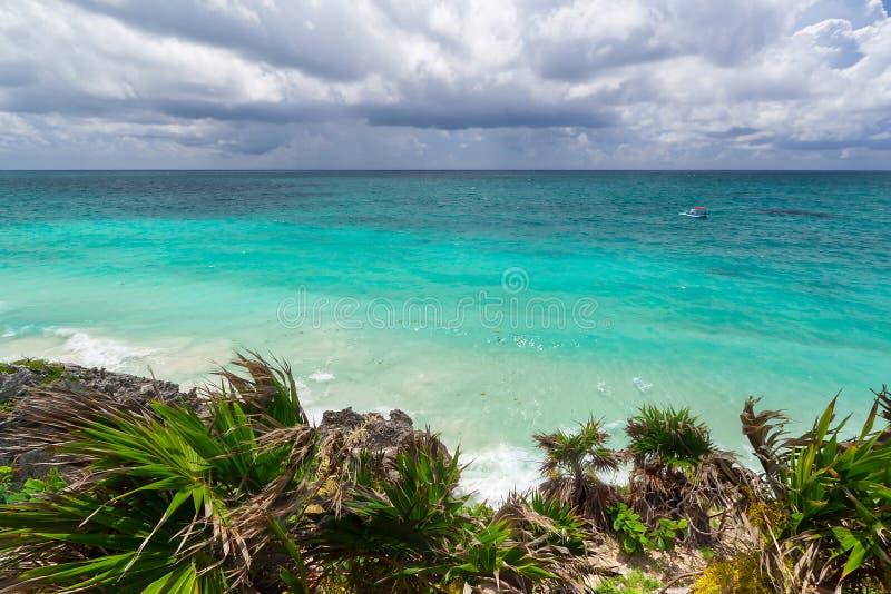 Spiaggia Caraibica Di Tulum Immagine Stock Libera da Diritti