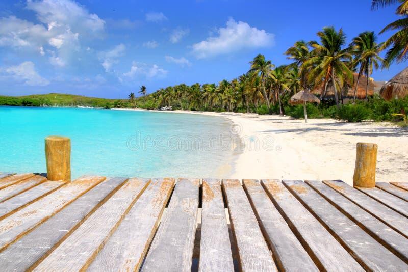 Spiaggia Caraibica Messico Del Treesl Della Palma Dell Isola Di Contoy Fotografie Stock