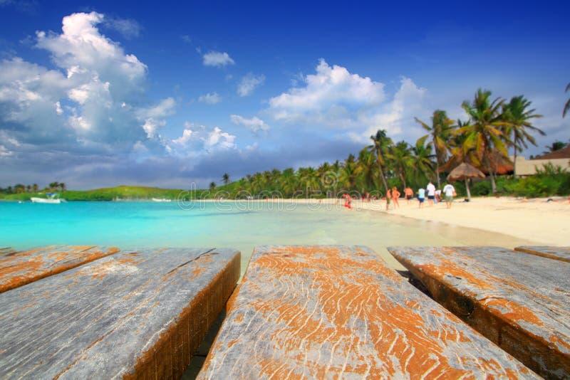 Spiaggia Caraibica Messico Del Treesl Della Palma Dell Isola Di Contoy Fotografia Stock Libera da Diritti