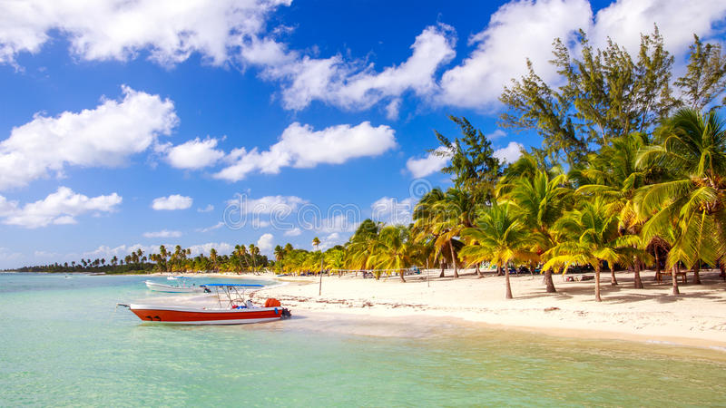 Spiaggia caraibica nella Repubblica dominicana immagini stock libere da diritti