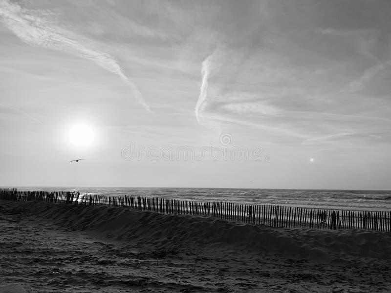 Spiaggia con il sole in bianco e nero fotografie stock