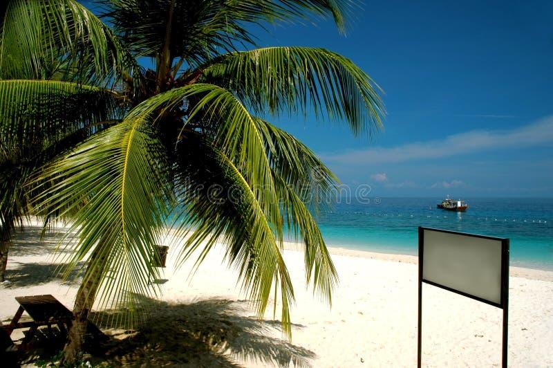 Spiaggia con l'insegna in bianco fotografia stock libera da diritti