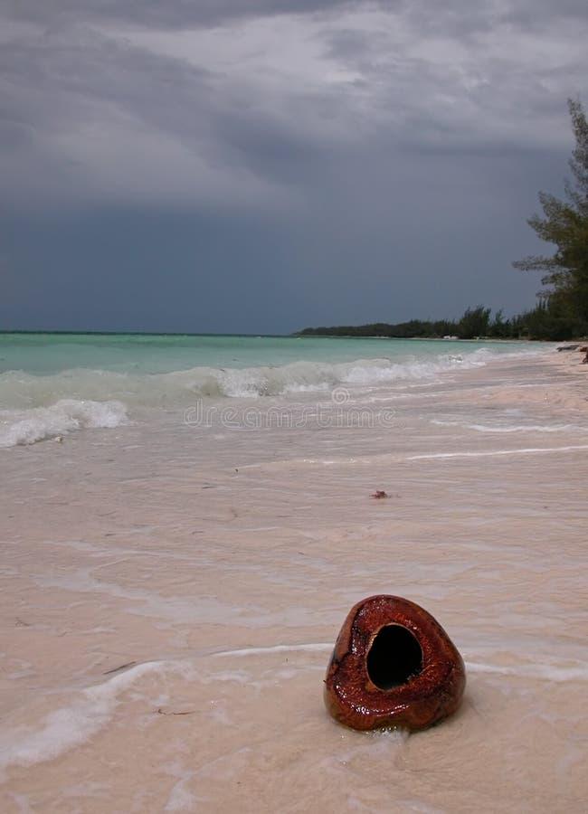 Spiaggia con la noce di cocco fotografia stock libera da diritti