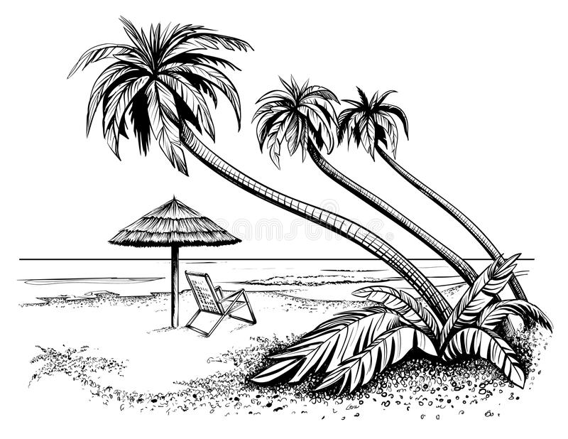 Spiaggia con le palme, schizzo del mare o dell'oceano Illustrazione in bianco e nero di vettore illustrazione di stock