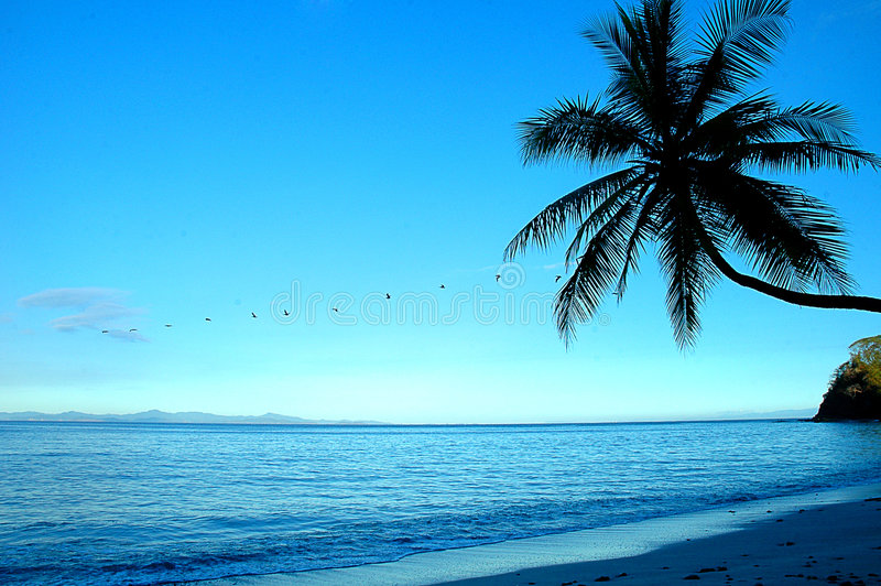 Spiaggia Costa Rica di Punta Leona fotografie stock