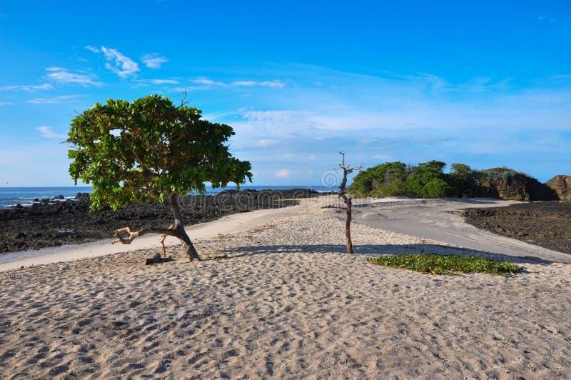 Spiaggia da entrambi i lati, penisola di Nicoya, Costa Rica di San Juanillo fotografia stock