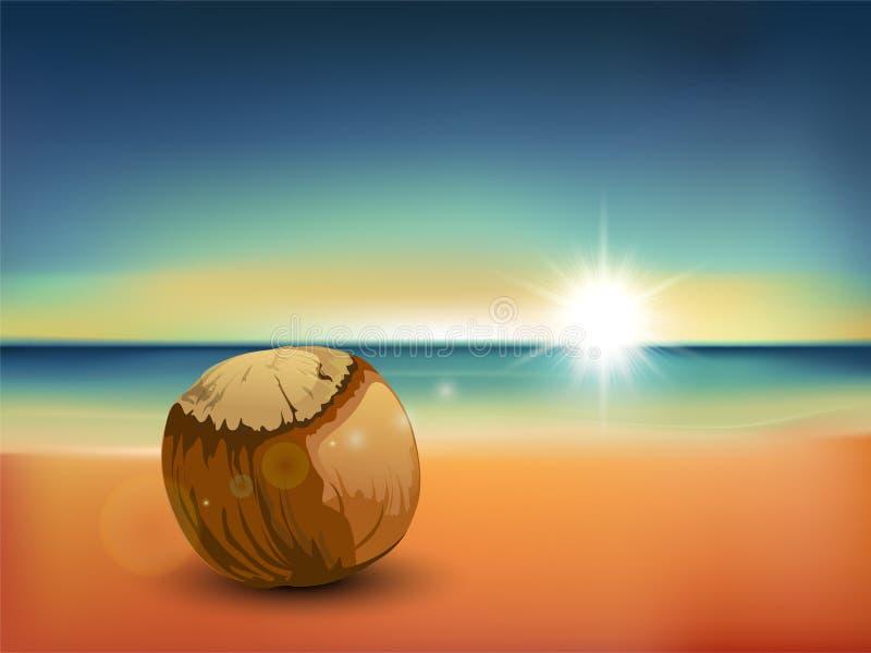 Spiaggia dei Cochi fotografia stock libera da diritti
