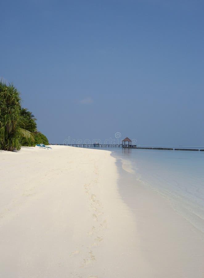 Spiaggia dei Maldives fotografia stock libera da diritti