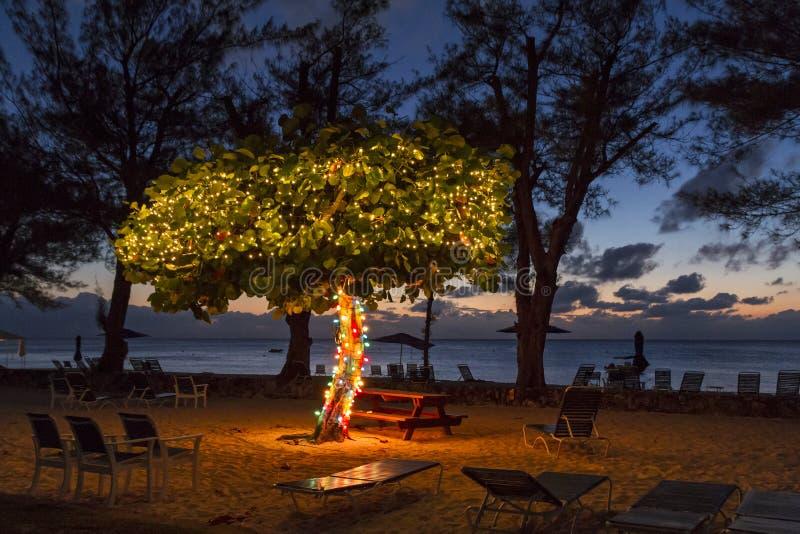 Spiaggia del caimano al crepuscolo fotografia stock