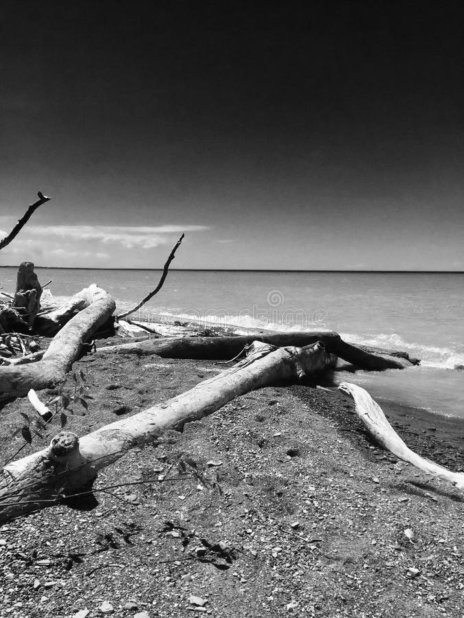 Spiaggia del lago Erie immagine stock