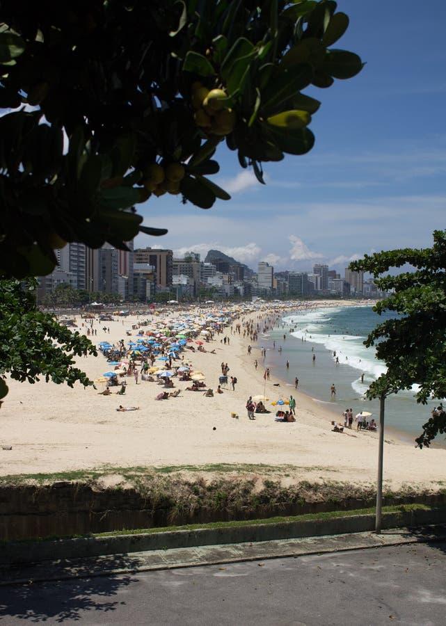 Spiaggia del leblon della costa in Rio de Janeiro Brasile fotografia stock libera da diritti