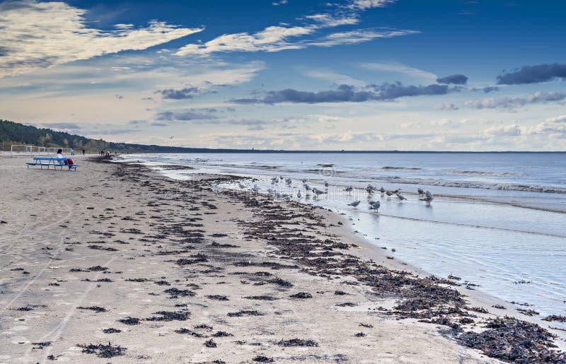 Spiaggia del Mar Baltico ottobre, in Jurmala immagine stock libera da diritti