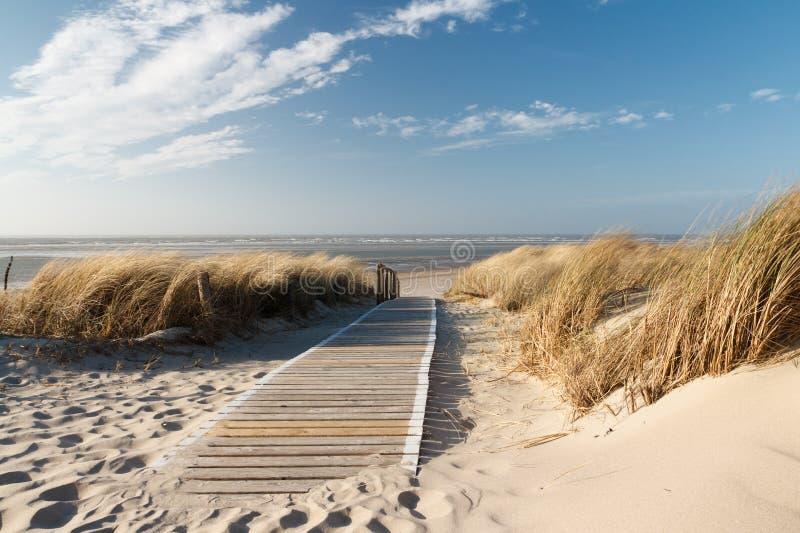 Spiaggia del Mare del Nord su Langeoog fotografia stock libera da diritti