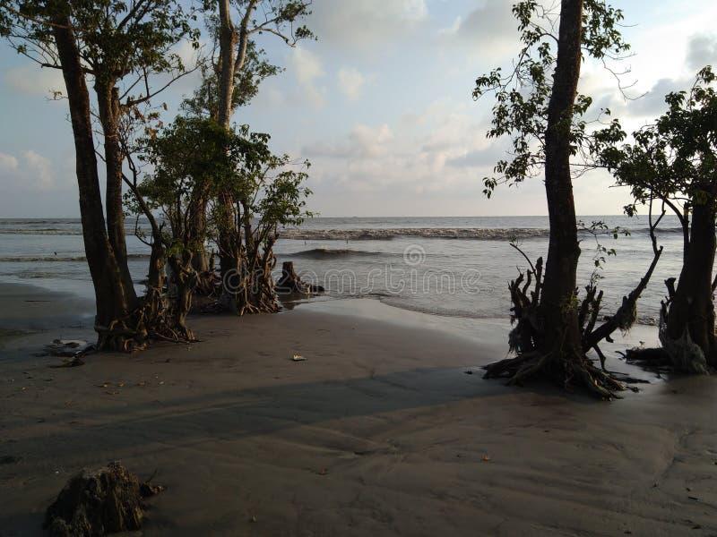 Spiaggia del mare di Kuakata fotografia stock libera da diritti