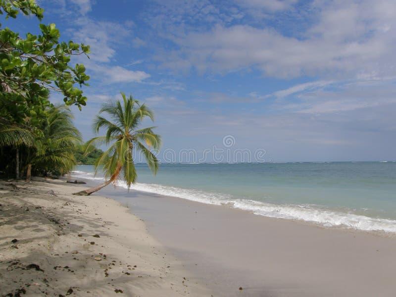 Spiaggia del parco nazionale di Cahiuta, Costa Rica fotografie stock libere da diritti