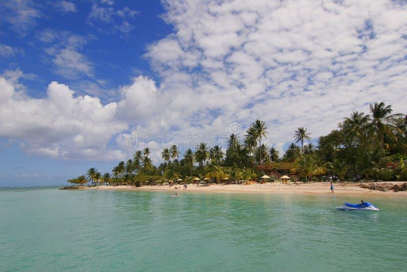 Spiaggia del punto del piccione fotografia stock libera da diritti