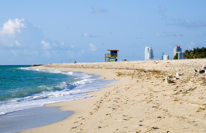 Spiaggia del sud di Miami immagine stock