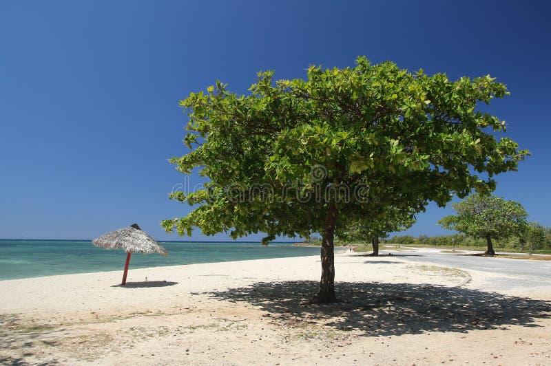 Spiaggia dell'ancona, Trinidad Cuba fotografia stock