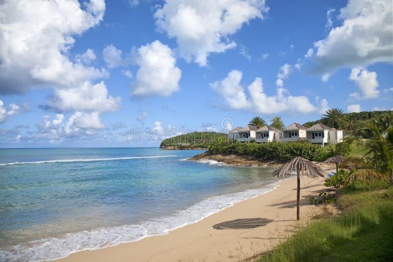 Spiaggia dell'Antigua immagine stock