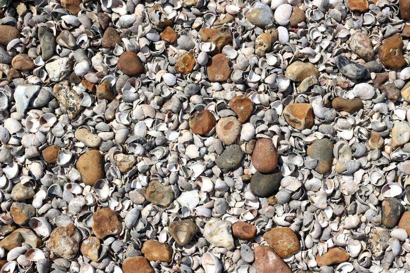 Spiaggia dell'assicella fotografie stock