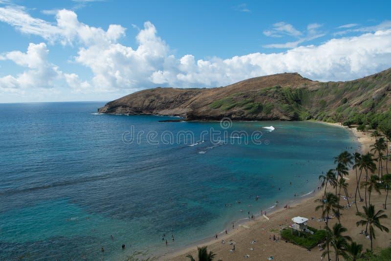 Spiaggia dell'Hawai fotografia stock