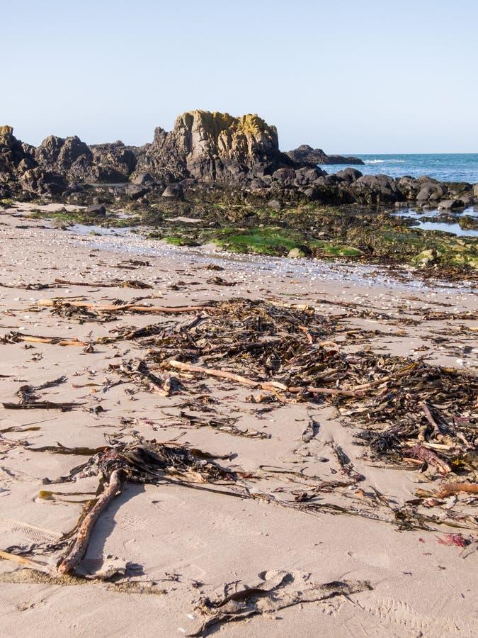 Spiaggia dell'Irlanda del Nord fotografia stock