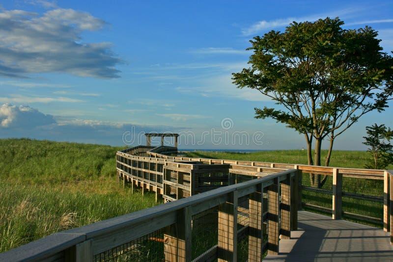 Spiaggia dell'isola della prugna immagine stock libera da diritti