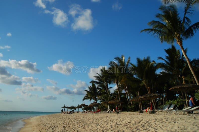 Spiaggia dell'Isola Maurizio fotografia stock libera da diritti