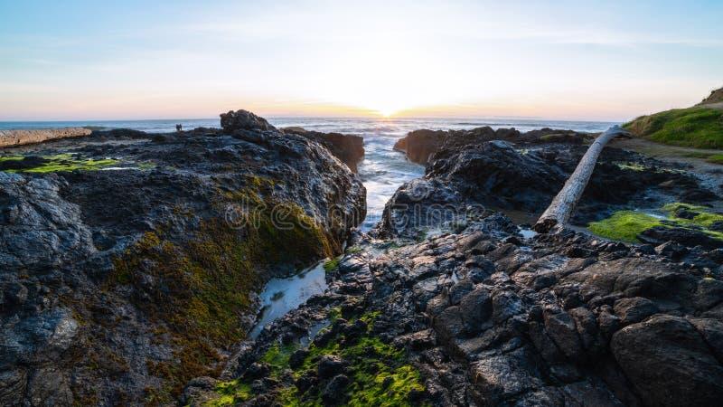 Spiaggia dell'Oregon al crepuscolo fotografie stock