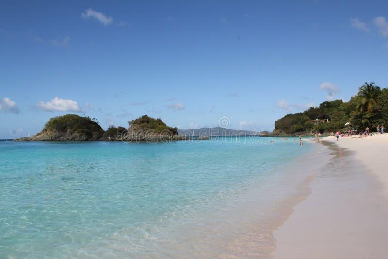 Spiaggia della baia del tronco, St John, USVI fotografia stock