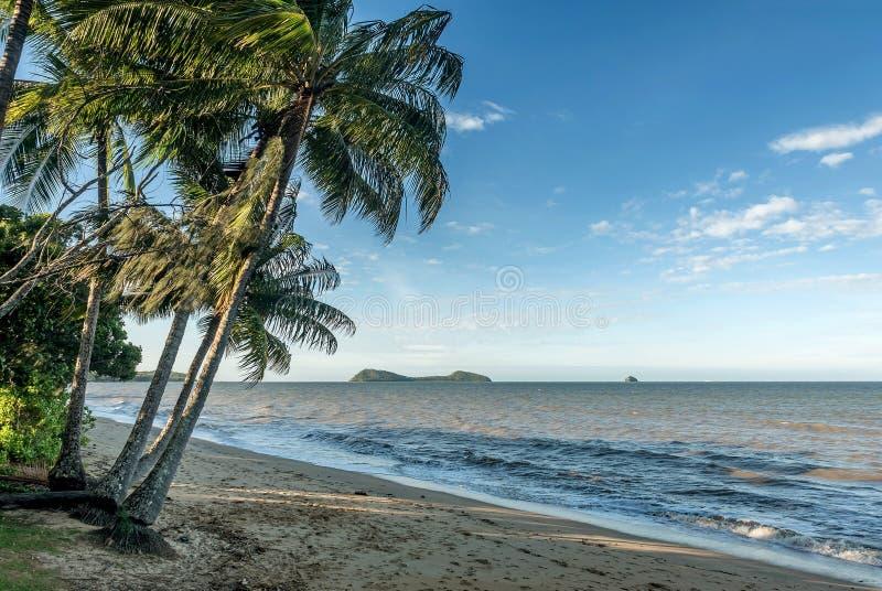Spiaggia della baia della palma in cairn Queensland, Australia fotografia stock libera da diritti