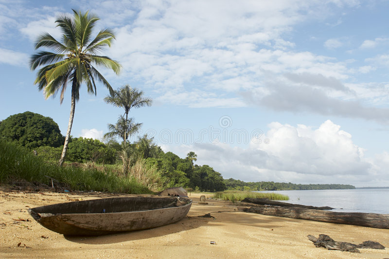 Spiaggia della giungla fotografia stock