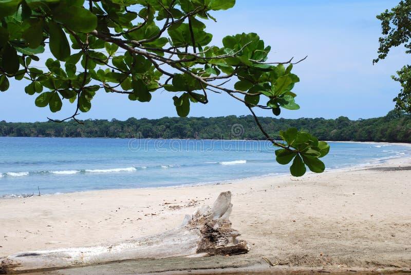 Spiaggia della sosta nazionale fotografie stock
