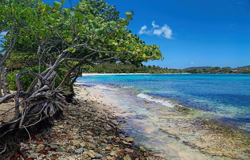 Spiaggia dello zaffiro sull'isola di St Thomas immagini stock libere da diritti