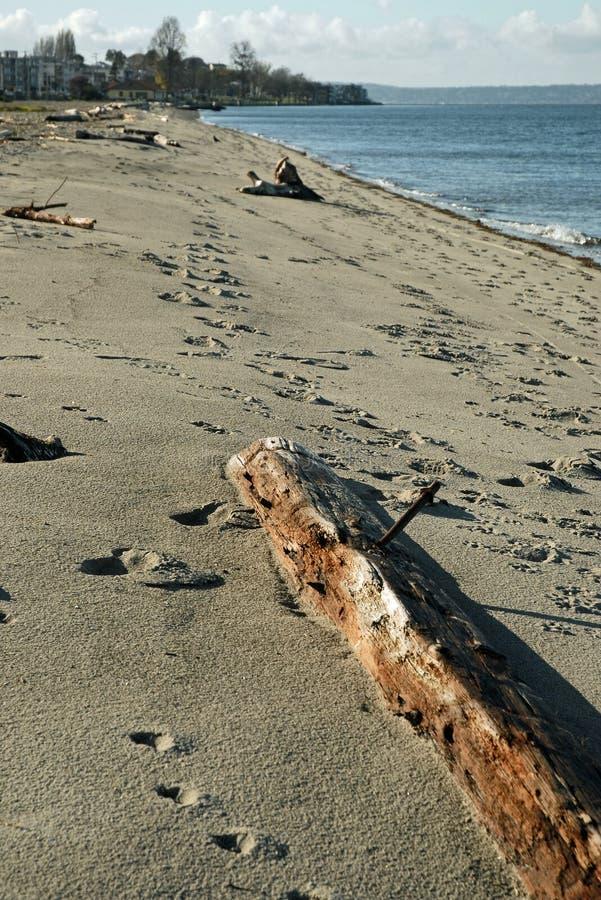 Spiaggia di Alki a Seattle ad ovest immagini stock