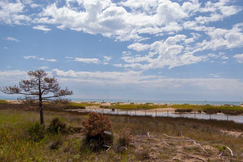 Spiaggia di Bibione immagine stock