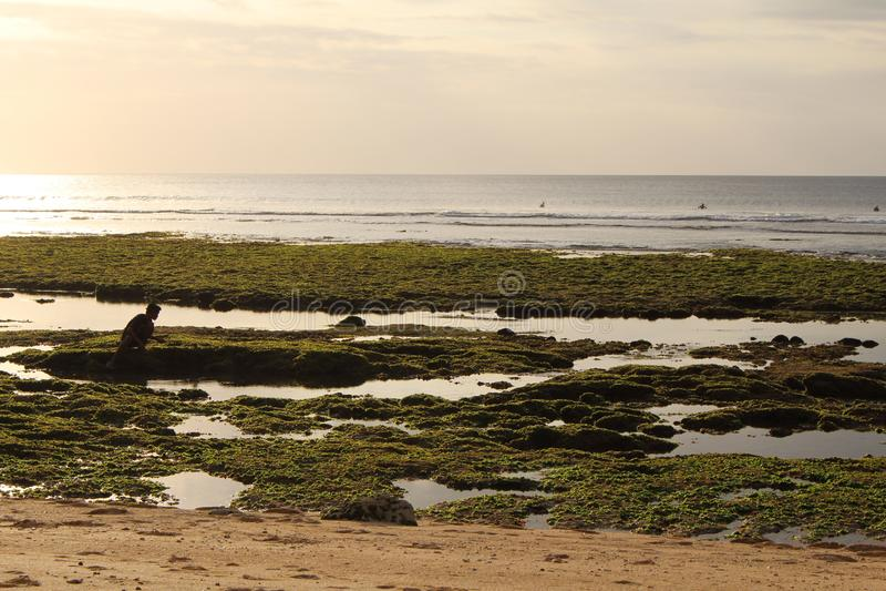 Spiaggia di Bingin, Bali, Indonesia immagini stock libere da diritti