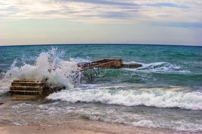 Download Spiaggia di Budva fotografia stock. Immagine di mare, corsa - 7302642