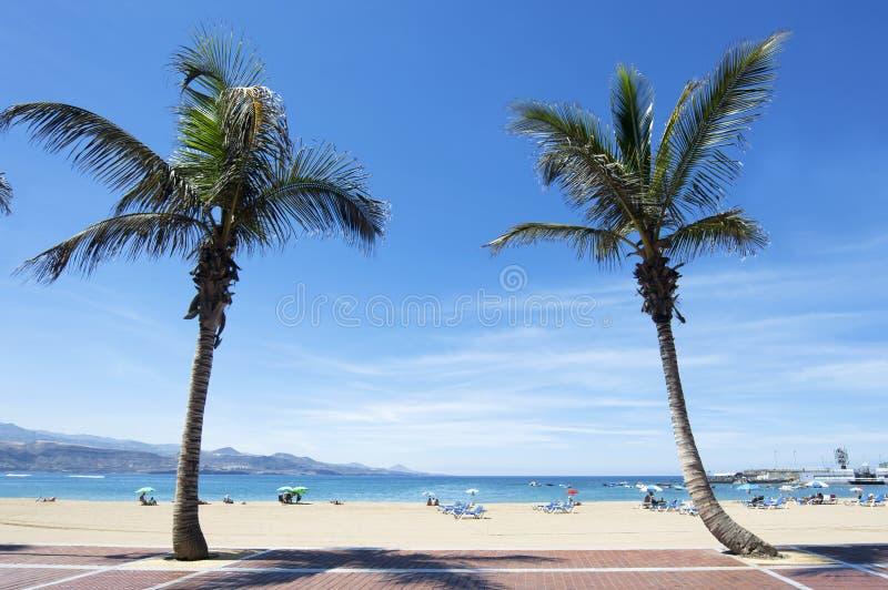 Spiaggia di Canteras, Las Palmas de Gran Canaria, Spagna immagini stock libere da diritti