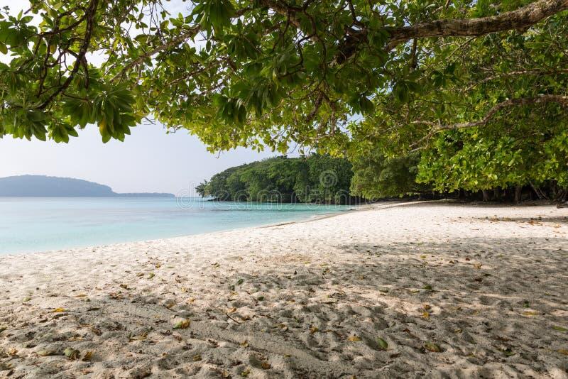 Spiaggia di Champagne, Vanuatu fotografie stock libere da diritti