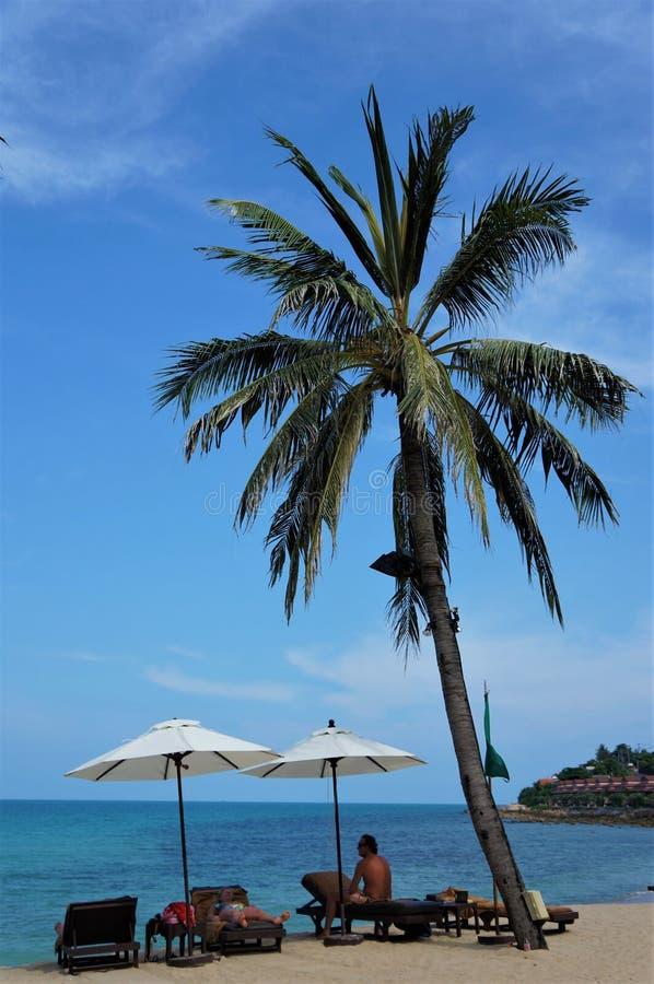 Spiaggia di Chaweng, isola di Koh Samui, Tailandia fotografie stock