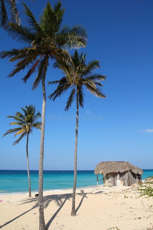 Spiaggia di Cuba fotografie stock