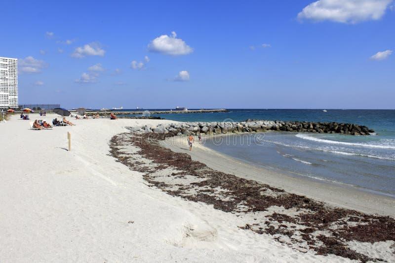 La gente che gode della spiaggia di Dania immagine stock libera da diritti
