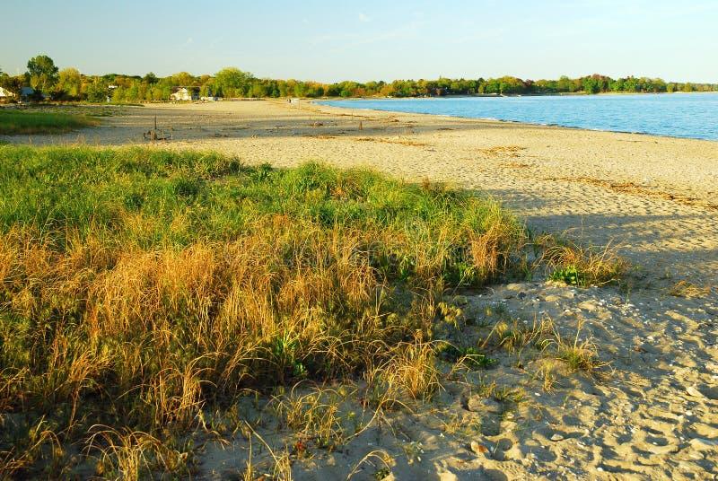 Spiaggia di Dessrted fotografia stock