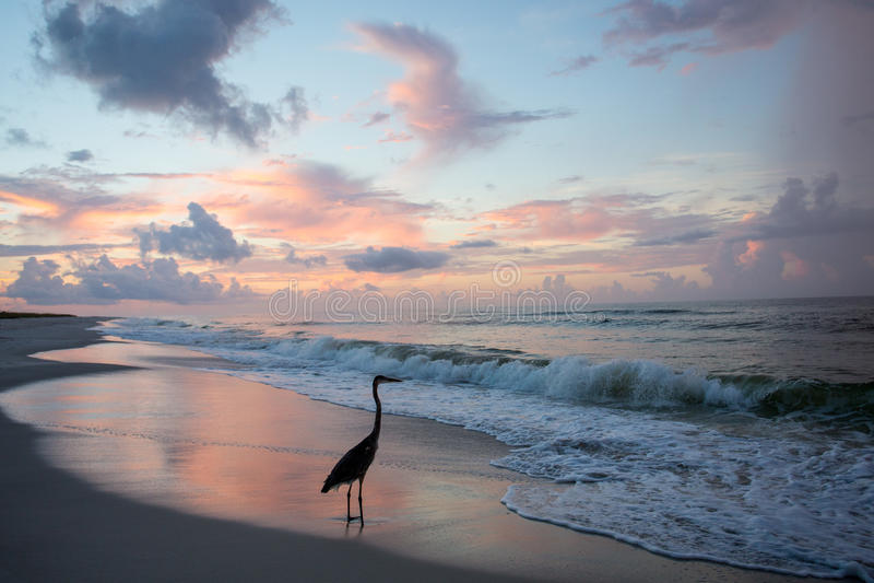 Spiaggia di Destin Florida fotografie stock libere da diritti