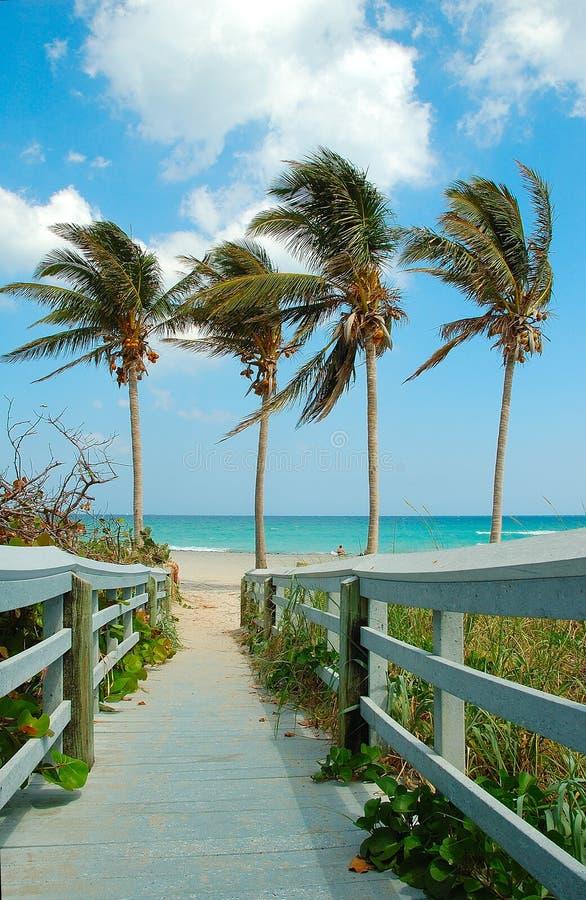 Spiaggia di domenica immagini stock